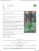 July 20, 2016 - GHC Emergency Hemp Industry Meeting